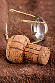 Champagne cork with muselet