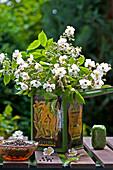 Strauß aus duftenden Wildrosenblüten in Teedose