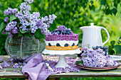 Blueberry mousse cake