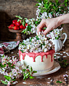 Vanilla cake with strawberry chocolate and blossoms