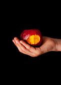 A bitten nectarine on an older childs hand
