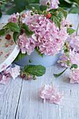 Hortensienblüten und Himbeerzweige in nostalgischer Papierbox