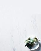 Besteck, Stoffserviette und Eucalyptusblätter im Schälchen