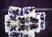 Lilac blossom ice cubes