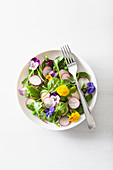 Mixed leaf salad with radishes, cucumber and edible flowers
