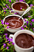 Home-made chocolate pudding