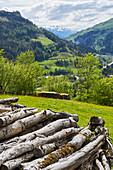 Logs at Goldegg am See, Pongau, Salzburger Land, Austria