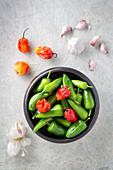 Verschiedene rote und grüne Chilischoten