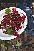 Redcurrants on an enamel plate