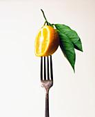Orange on a fork