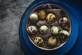 Fresh quail eggs on gray background