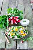 Cucumber, egg and radish spring salad