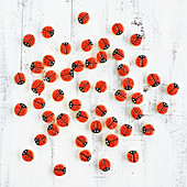Lots of little ladybird motif cookies