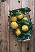 Frische Zitronen im Drahtkorb
