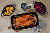 Roast goose with red cabbage and potato dumplings