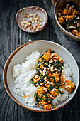 Tofu spinach curry with basmati rice and cashews