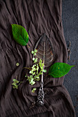 Blattförmiger Tortenheber aus Silber mit Rosengriff