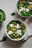 Fusilli mit Grünkohl, Avocado und Burrata