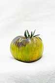 Green tomato on a white background