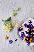 Elderberry flowers and violet on the table
