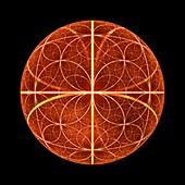 Fibonacci abstract fractal illustration