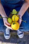 Hands holding big lemons