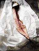 Makrelen-Karkasse auf Papier