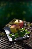 Two apples with leaves on a wooden table outdoors