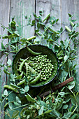 Pea pods and freshly shelled peas