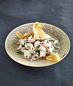 Ceviche with red onions