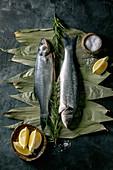 Roher Seebarsch mit Zitrone, Meersalz und Rosmarin auf getrockneten Bambusblättern