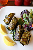 Grape leaves stuffed with rice, pine nuts, onions, black currants and herbs