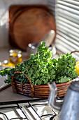 Frischer Grünkohl auf Küchenarbeitsplatte am Fenster
