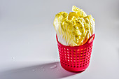 Chinese cabbage in a pink plastic basket