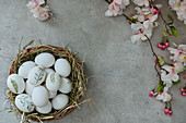 Painted Easter eggs in an Easter basket and a blooming cherry branch