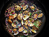 Clams cooking in apan with butter, chopped onions and garlic