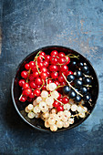 Currants in three colors