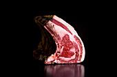 Premium spanish steack beef