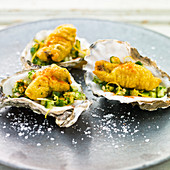 Battered Oysters on a bed of cucmber salad, served in oyster shells with a sprinkling of chilli powder, lemon zest and rock salt