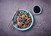 Vegetarian noodle stirfry with hoisin sauce (Asia)