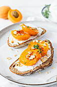Country bread with quark and apricots