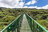 A suspension bridge across the treetops in Selvatura Park, Monteverde, Costa Rica, Central America