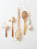 Haferkörner, Haferflocken, Porridge und Hafermehl auf Löffeln