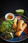 Frühlingsrollen mit Salat und Dip (Asien)