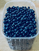 Fresh blueberries in a plastic container