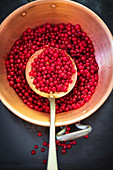 Redcurrants to be cooked in copper pot with a draining spoon