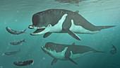 Acrophyseter fishing, illustration