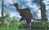 Deinocheirus dinosaur, illustration