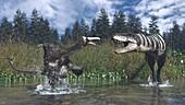 Deinocheirus and Tarbosaurus fighting, illustration