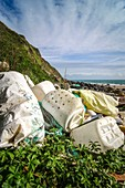 Plastic litter on coast